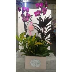 Centró alargado de plantas y orquídeas