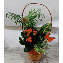 Cesta de mimbre alta con plantas naturales