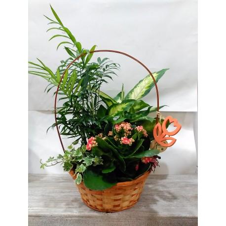 Cesta de mimbre con asa y decoración de plantas naturales